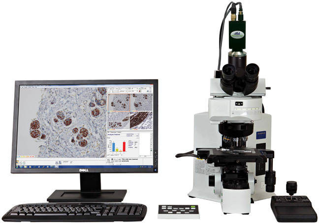MetaGene Pty Ltd, Pathology, Histology, Cancer Research, MetaGene